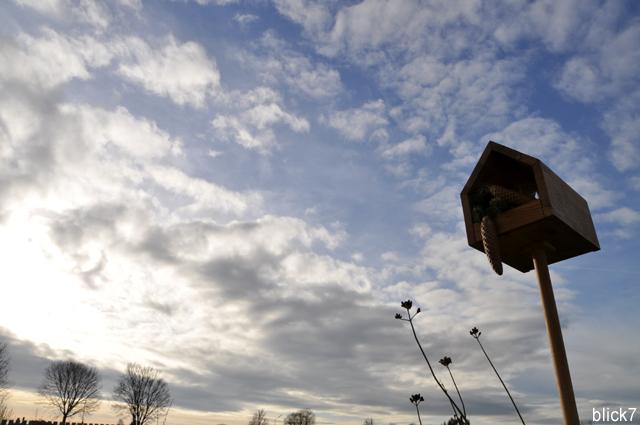 Vogelhaus mit Tannenzapfen