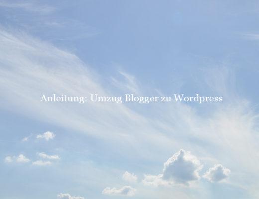Blogumzug_b7