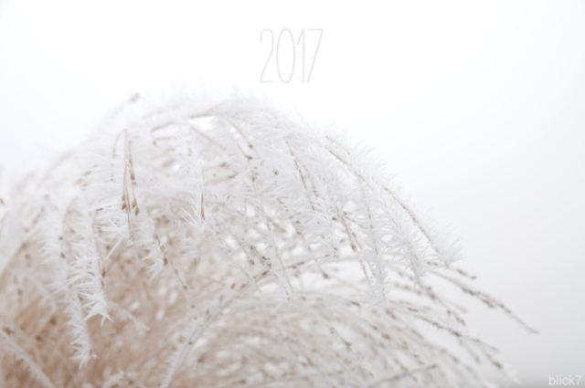 Hallo 2017! Von Wünschen, guten Vorsätzen und meiner Bucket List