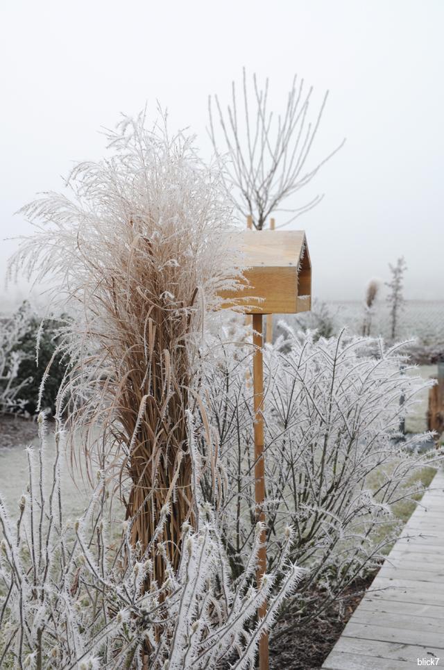 Vogelhäuschen im Wintergarten bei blick7