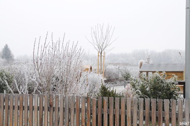 der blick7-Garten im Januar 2017