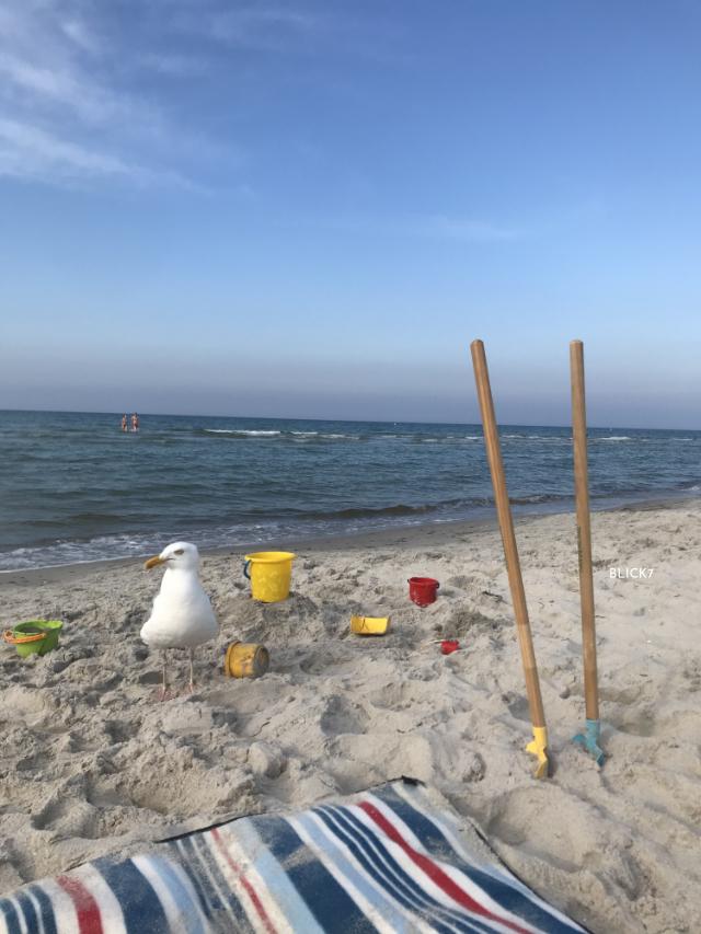 Ostseeurlaub mit Kindern
