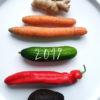 Mit der Neujahrsmotivation ausmisten und die Ernährung umstellen
